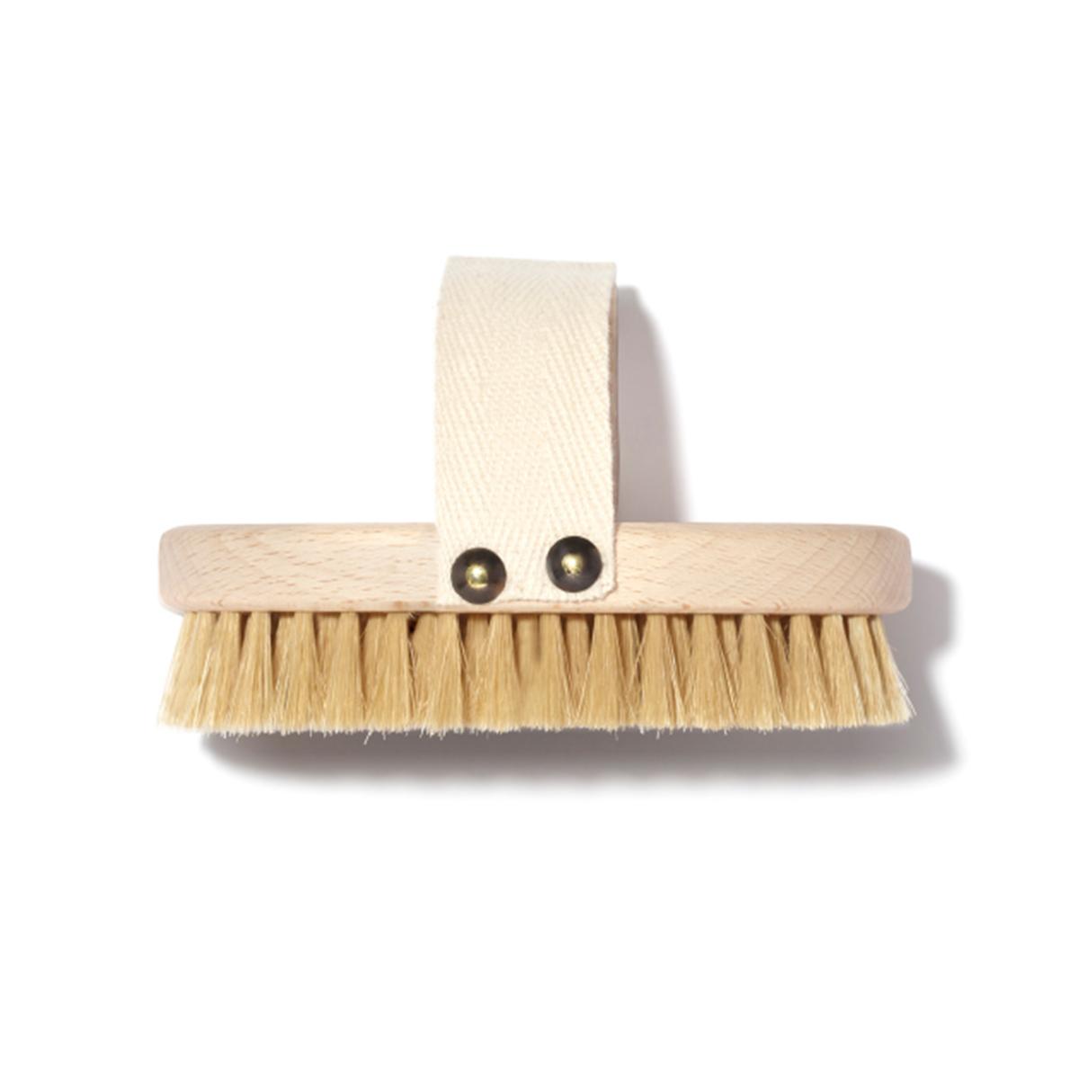 Dry Brush Bristles