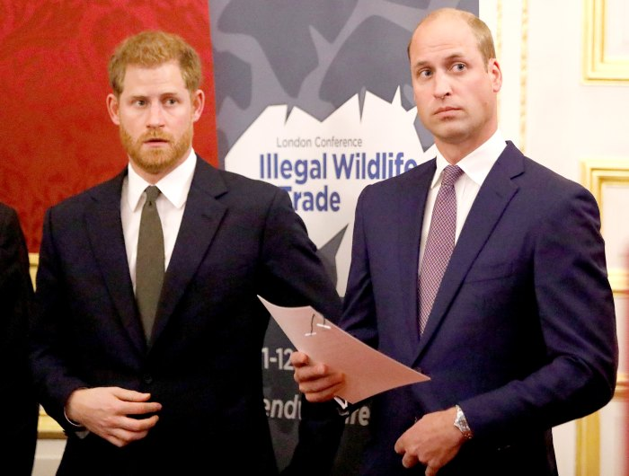 Is-There-a-Rift-Between-Harry-and-William