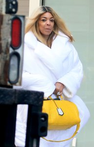 Wendy Williams: 'I Feel Wonderful' After Alleged Relapse, Marriage Problems