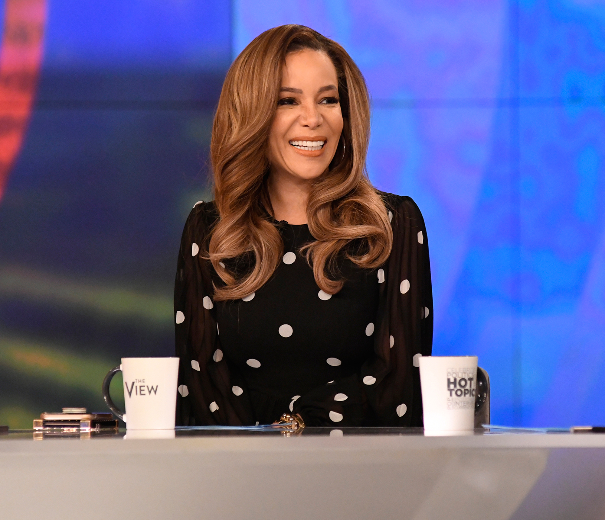 Every 'The View' Cohost Since 1997 Premiere: Joy Behar, Barbara Walters, Whoopi Goldberg and More - The lawyer joined the series in 2016.