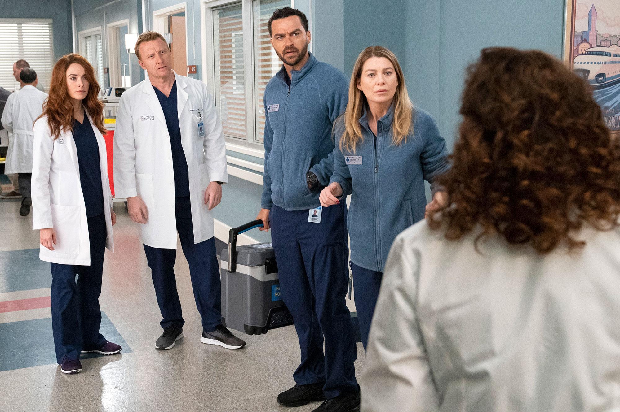 Greys Anatomy - Abigail Spencer, Kevin McKidd, Jesse Williams, and Ellen Pompeo in 'Grey's Anatomy.