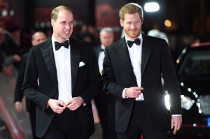 Prince William and Prince Harry Very Close