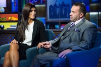 RHONJ Stars on Teresa Giudice Coping With Joe in Custody