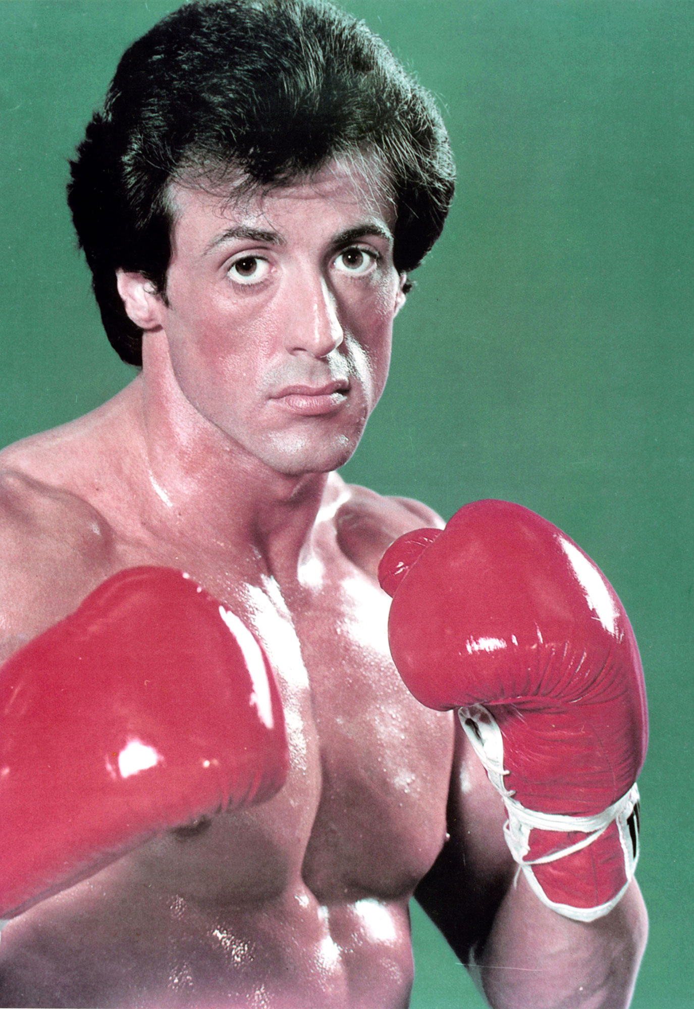 Sylvester Stallone Teachers Before Fame - Stallone is best known for portraying boxer Rocky Balboa in the Rocky movie series, but before he climbed the stairs at the Philadelphia Museum of Art, he was teaching physical fitness in a different capacity — as a gym teacher at the American College in Switzerland!