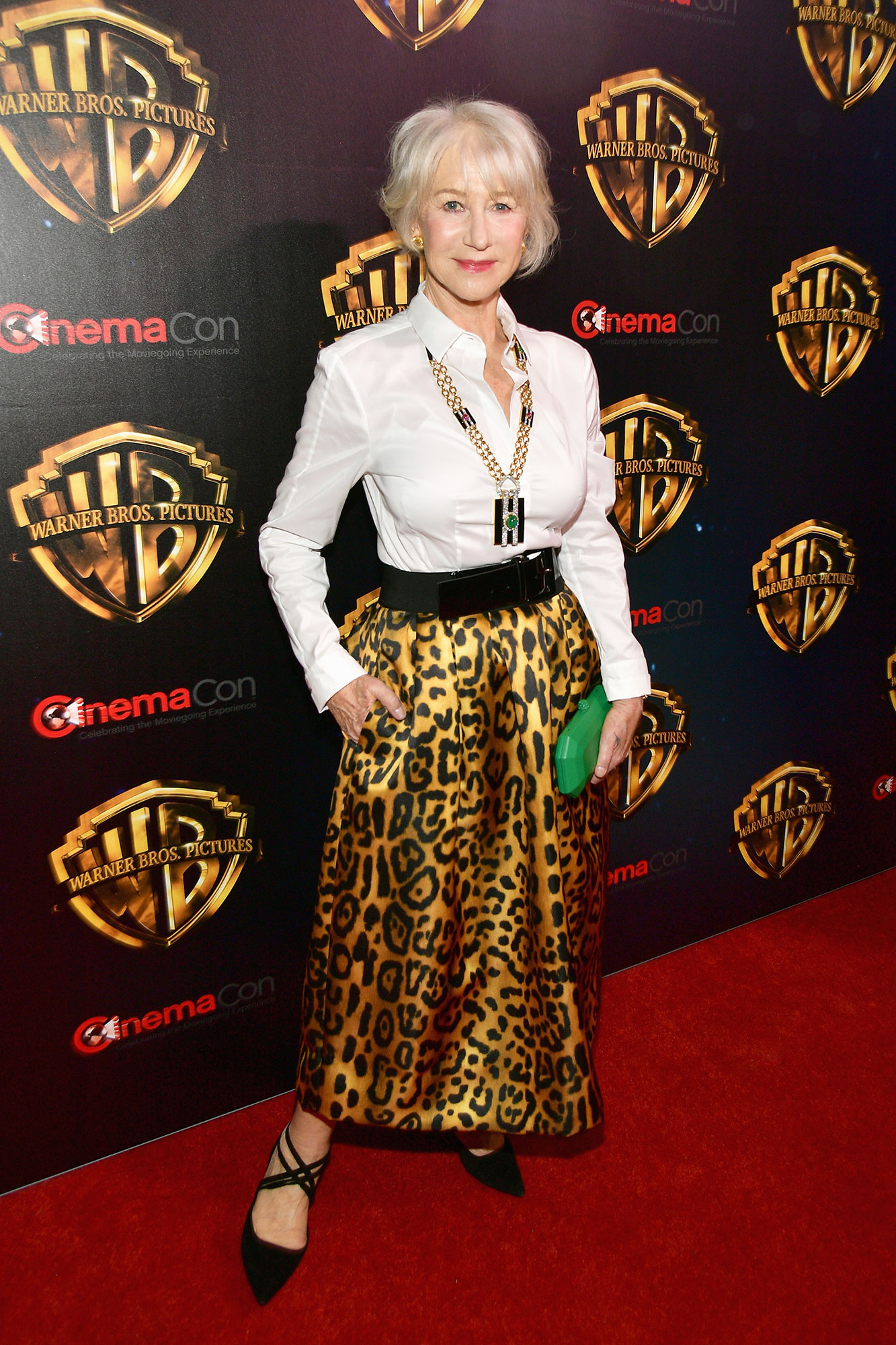 The Stars Are Bringing Their Style A-Game to CinemaCon - It doesn't get much fiercer than the acting legend's animal-print Adam Lippes skirt that she accessorized with a crisp white blouse, David Webb jewels and a Tyler Ellis clutch on Tuesday, April 2.