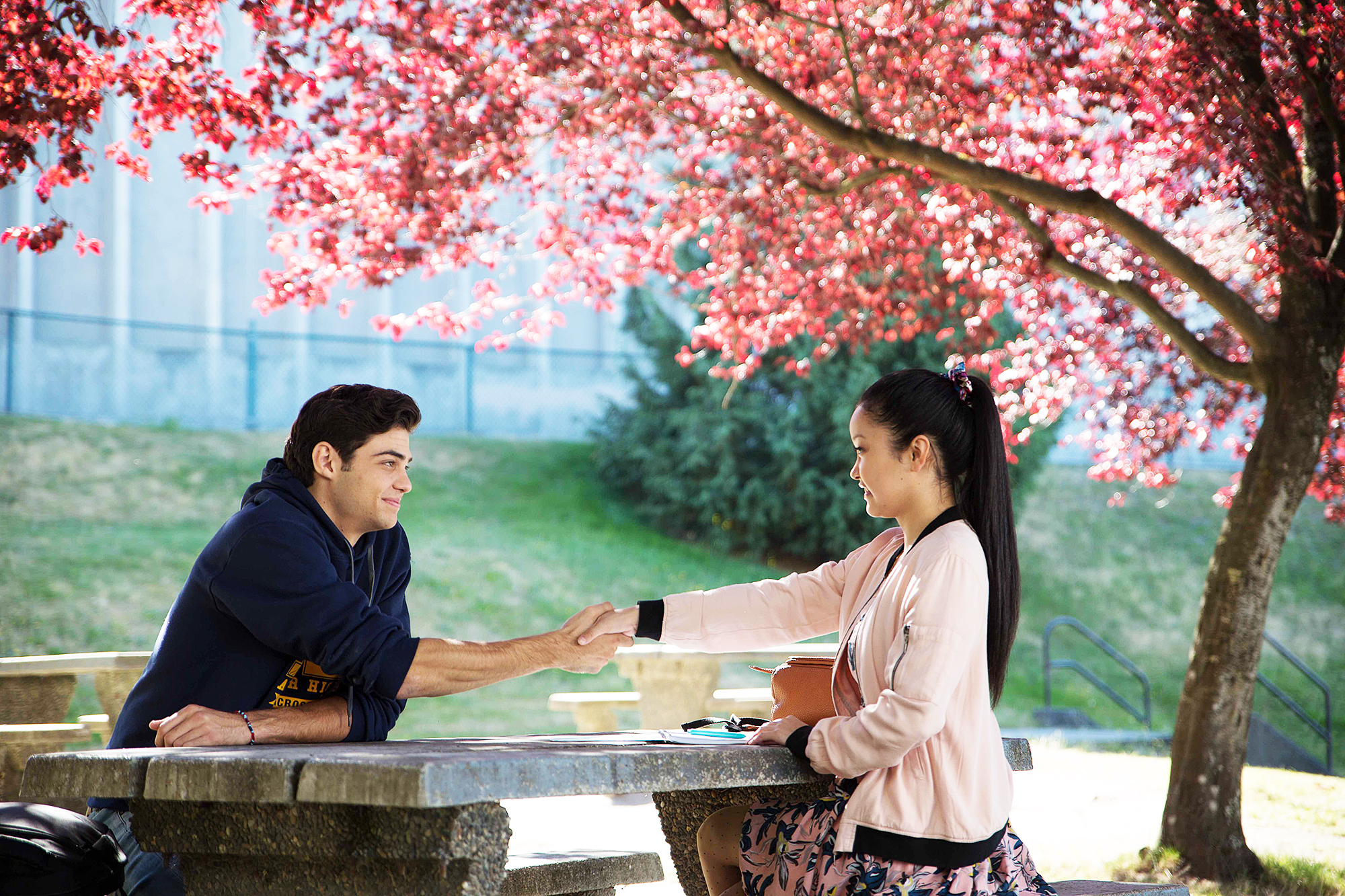 To-All-the-Boys-I've-Loved-Before-noah-returning-sequel - Lana Condor and Noah Centineo will reprise their roles as Lara Jean Covey and Peter Kavinsky, respectively. The actors' involvement in the sequel was announced in Netflix's December 2018 letter.