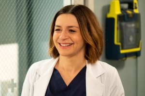 "recap Grey's Anatomy - ""Head Over High Heels"" Caterina Scorsone"