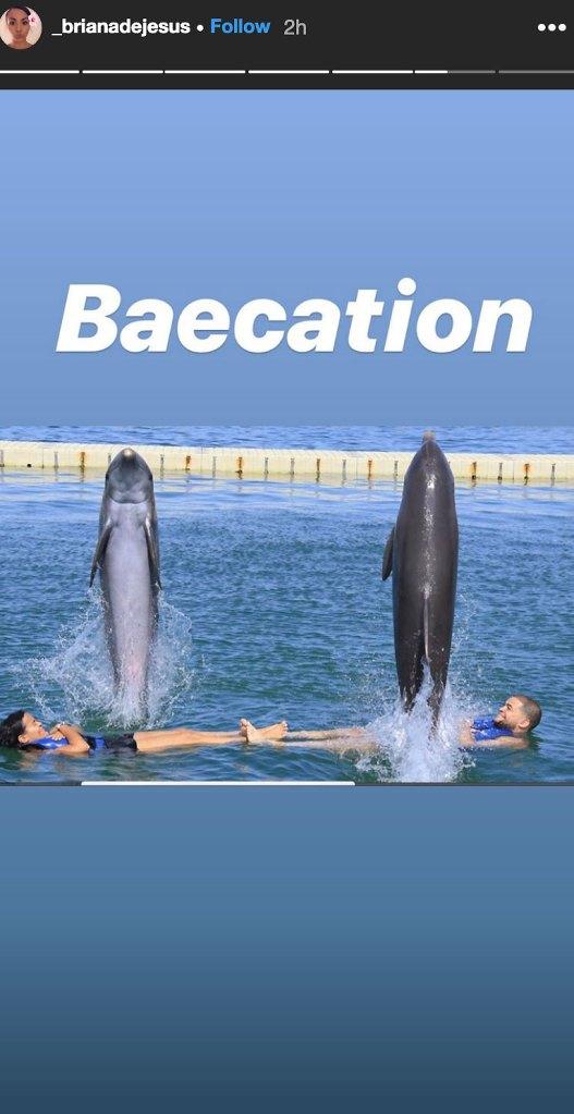 Briana DeJesus Anniversary Dolphins