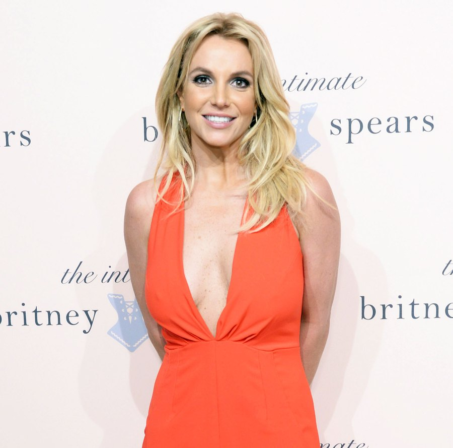 Britney Spears Court Appearance