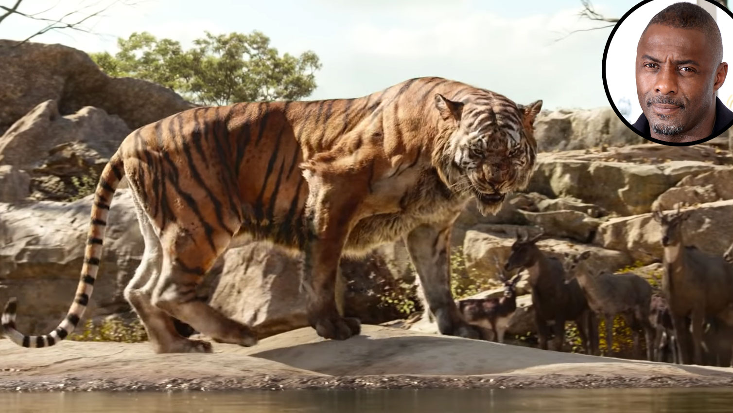 Idris Elba Shere Khan Jungle Book Voice Over Disney and Pixar Characters - Shere Khan in The Jungle Book (2016)