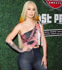 Iggy Azalea Deletes Social Media Accounts Nude Photo Leak