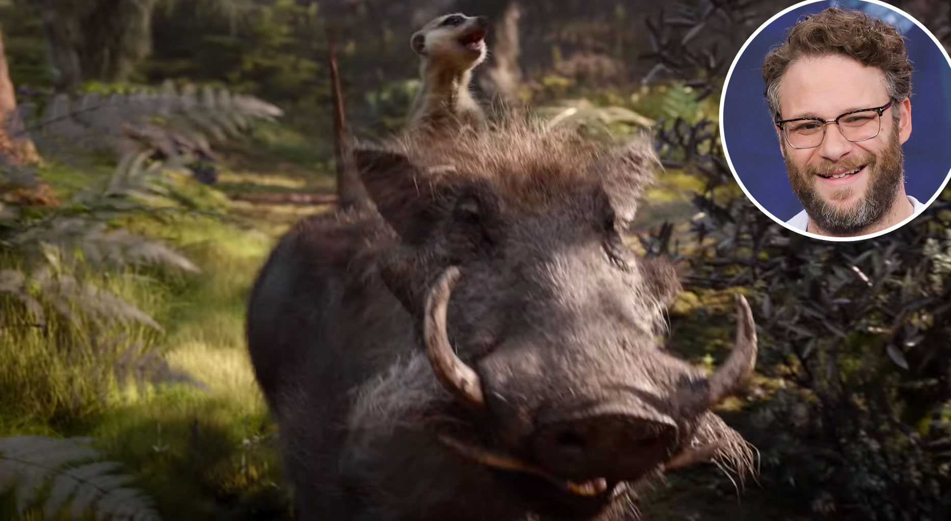 Seth Rogan Pumba Lion King Voice Over Disney and Pixar Characters - Pumba in The Lion King (2019)