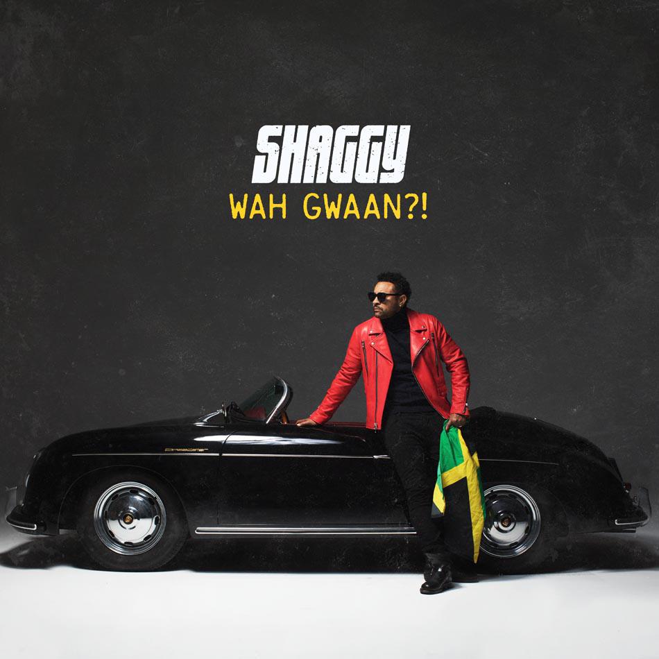 Shaggy-Album-Cover