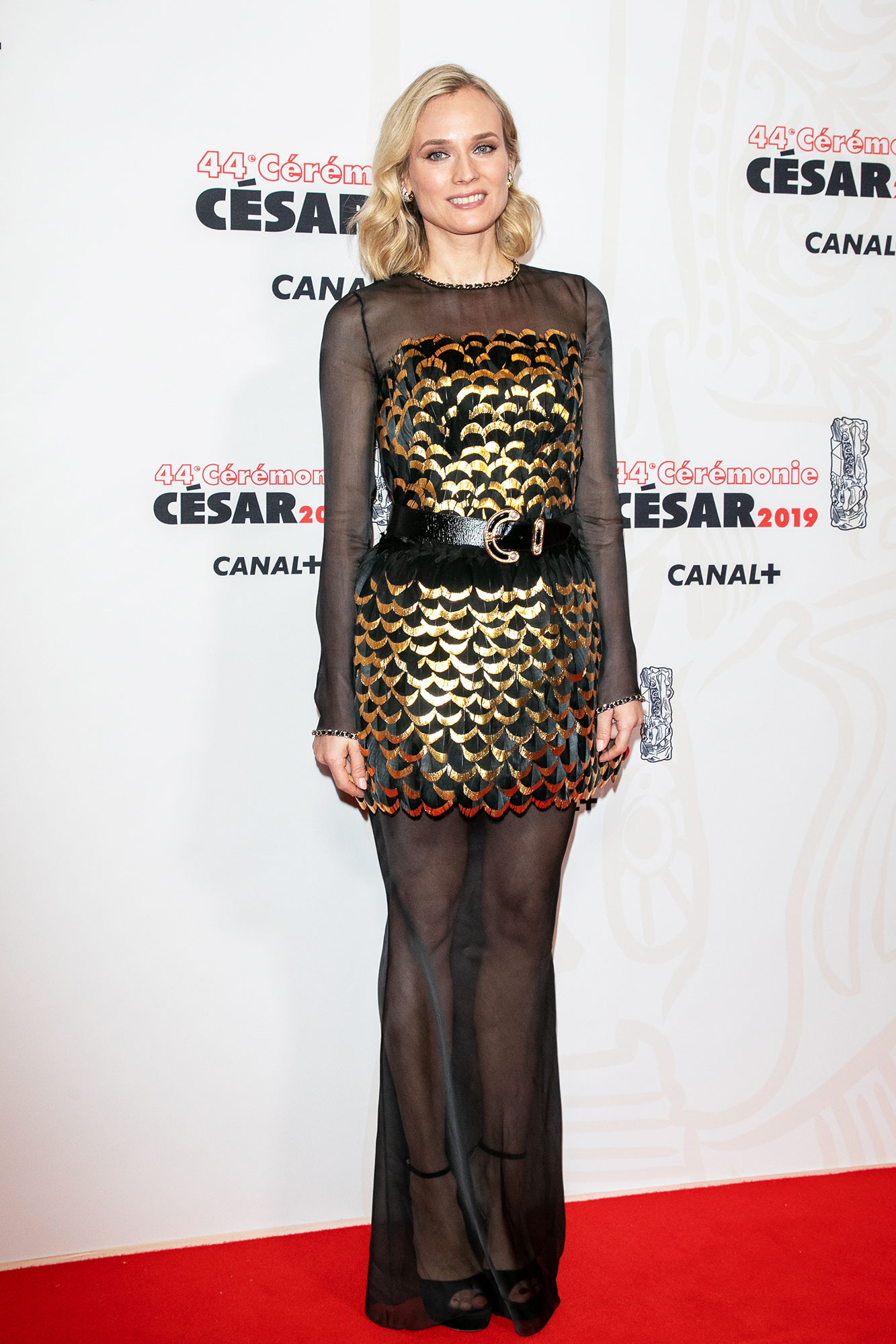 Diane Kruger stylish gold - In an organza Chanel design on Feb. 22.