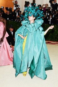Frances McDormand The Wild Met Gala Red Carpet Fashion Looks We Can't Stop Thinking About