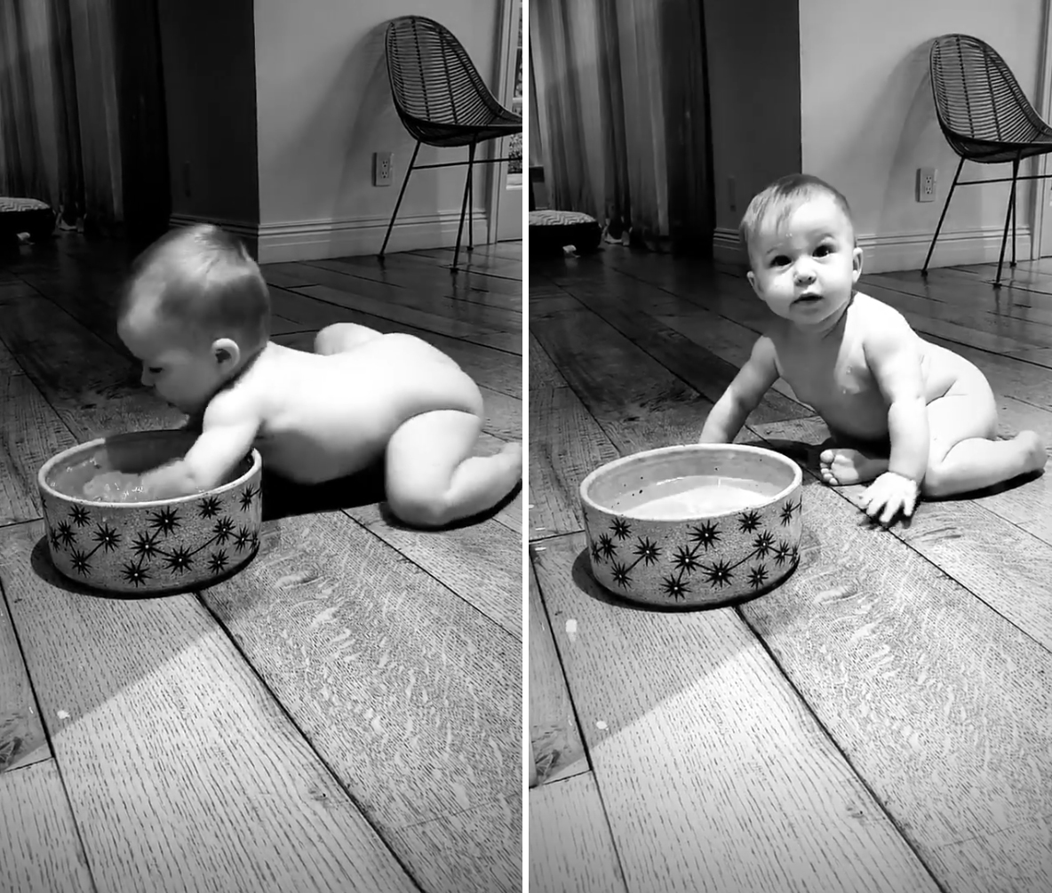 Hilary-Duff's-Daughter-Banks-Playing-in-Dog's-Water-Bowl