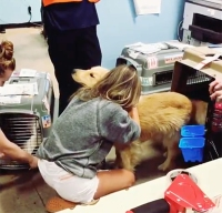 Heartfelt Moment Kaitlyn Bristowe Met Her and BF Jason Tartick New Dog Ramen