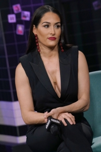Nikki Bella's Doctors Found a Cyst on Her Brain Before Her WWE Retirement