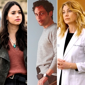 Janine Mason Roswell Penn Badgley You and Ellen Greys Anatomy shows run by women