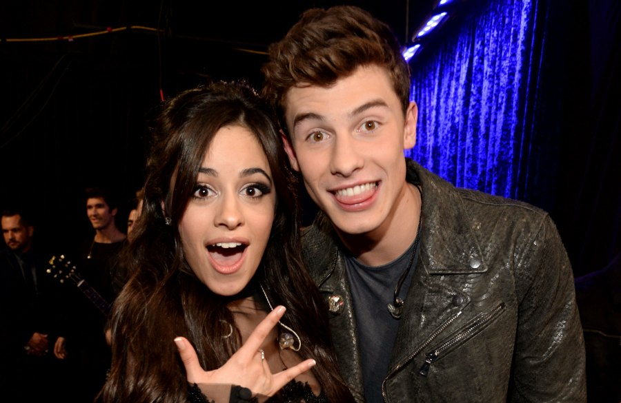 Camila Cabello Fangirls at Shawn Mendes Concert Amid Dating Rumor