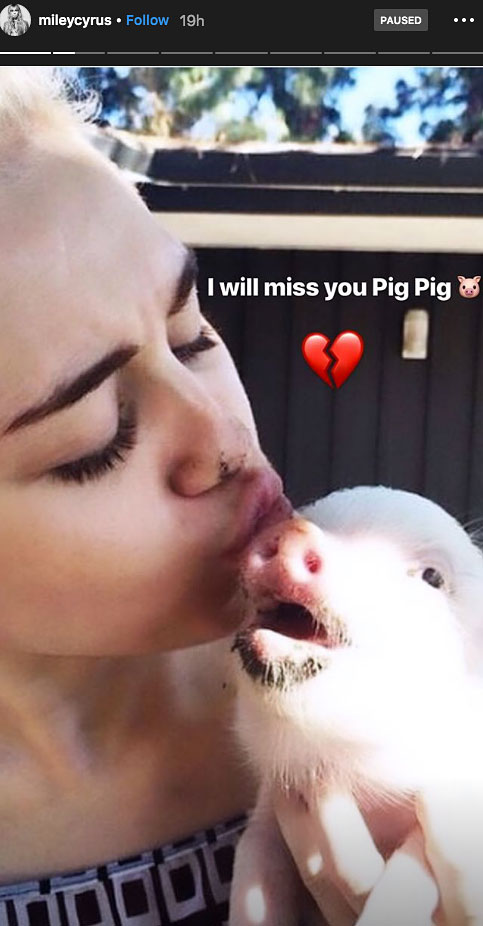 Miley Cyrus and Pig Pig
