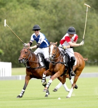Prince-Harry-Prince-William-polo-game-horses