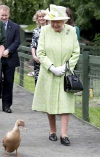 Queen-Elizabeth-lime-dress