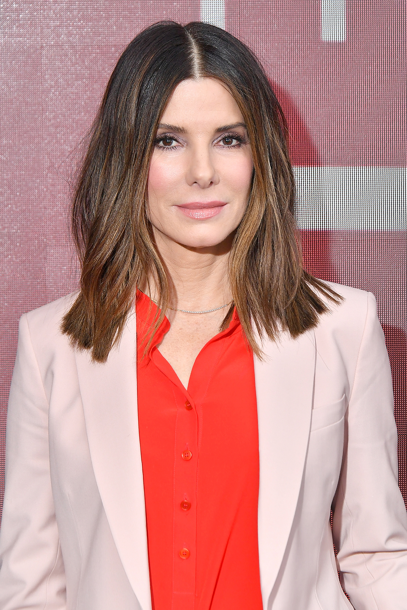 Sandra Bullock Rescues Pup Nearly Year After Death of Her 2 Dogs
