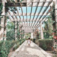 Walking in a Garden Stormi Webster's Baby Album: Kylie Jenner and Travis Scott's First Child