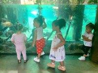 Stormi Arms Crossed At Aquarium, Kylie Jenner Instagram
