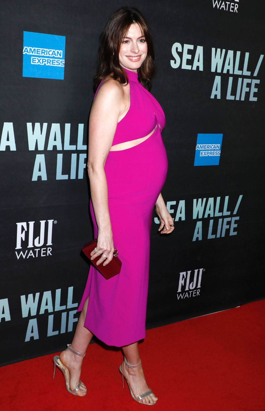 Anne Hathaway Red Carpet Announcing 2nd Pregnancy