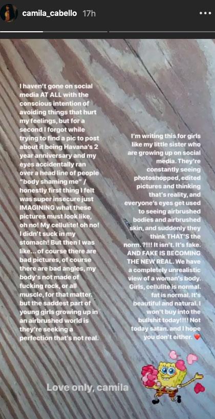 Camila Cabello Body shamer instagram story