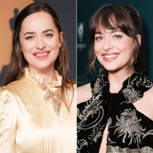 Dakota Johnson Gap Tooth Before and After