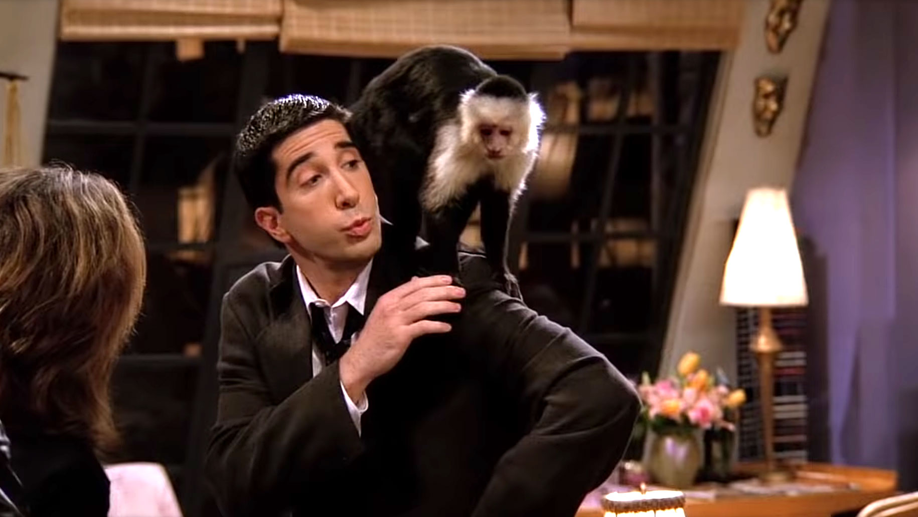 Marcel the Monkey From 'Friends' Is Returning to TV ...