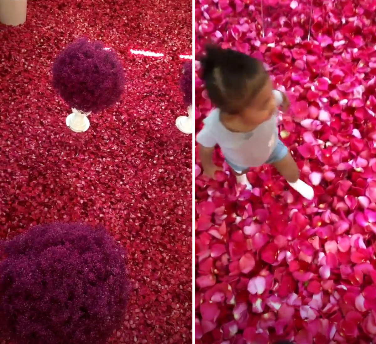 Travis-Scott-Covers-GF-Kylie-Jenner's-House-in-Rose-Petals-Ahead-of-Birthday
