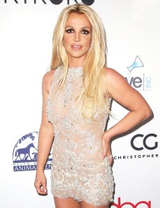 Britney Spears Hollywood Beauty Awards February 25, 2018