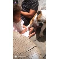 Luna Legend Holds Hands With Dog