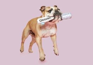 Glossier x BarkBox Limited-Edition Dog Toy Collaboration: Pics