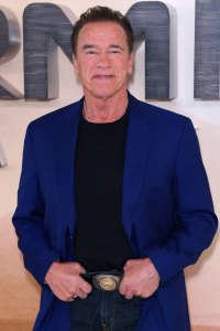 Arnold Schwarzenegger Stars Evacuate Homes Due to California Wildfires
