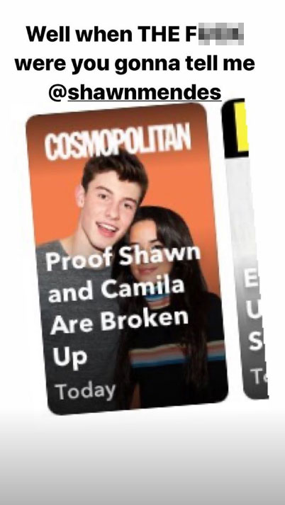 Camila Cabello Denies Rumors She and Shawn Mendes Have Broken Up In a Joking Instagram Post