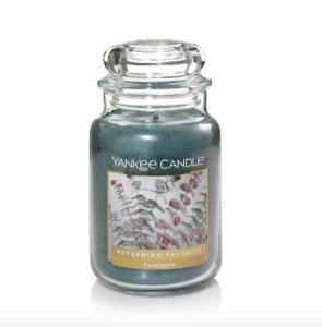 Eucalyptus Yankee Candle