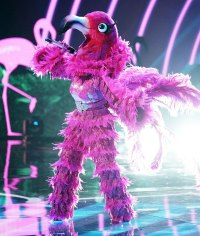 Flamingo Masked Singer Season 2 Two Costume Dress Up Singing Onstage