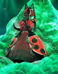 Ladybug Masked Singer Season 2 Two Costume Dress Up Singing Onstage
