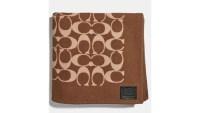 Monogram-Scarf-Blanket-Hed