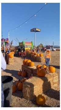 Ronnie Ortiz-Magro Visits Pumpkin Patch With His Daughter Ariana