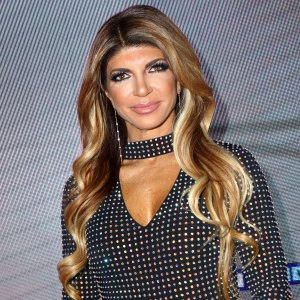 Teresa Giudice's Lawyer Speaks Out About 'Hook Up' in New 'RHONJ' Season 10 Teaser