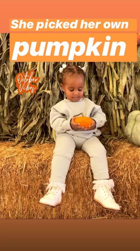 Tia Mowry Celebrity Families Visiting Pumpkin Patches