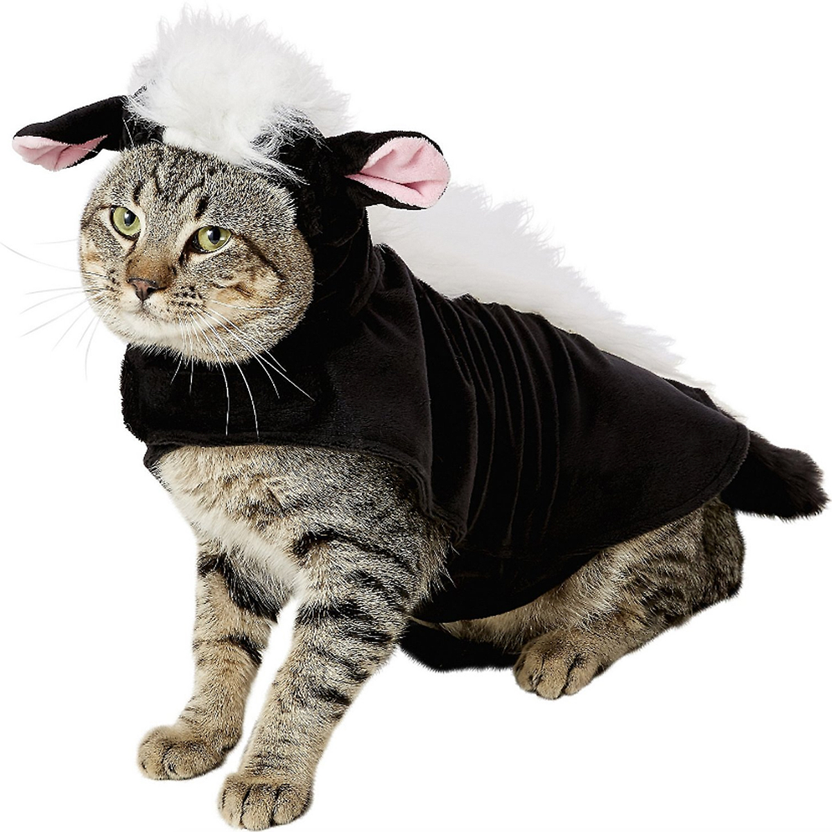 cat skunk costume