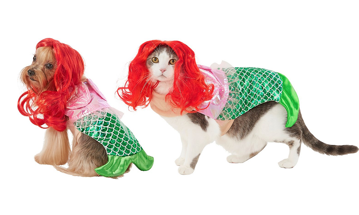 dog cat little mermaid costume