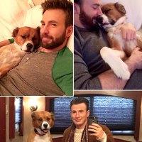 Chris Evans His Dog Dodger See Their Pawsome Friendship